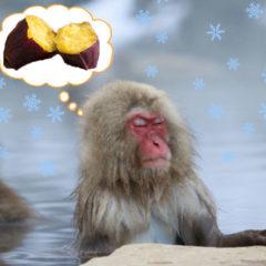 アンジェラ 冬は焼き芋